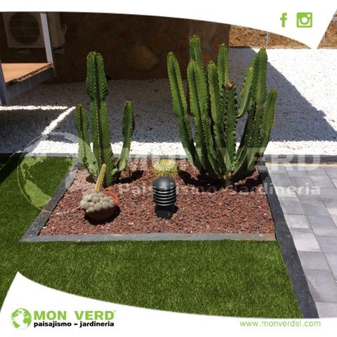 post-cactus-monverd-7-febr17