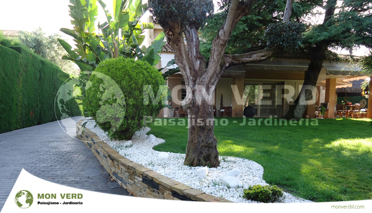 Urbanizaci n monasterios dise o de jardines valencia jardiner a y paisajismo - Paisajismo valencia ...