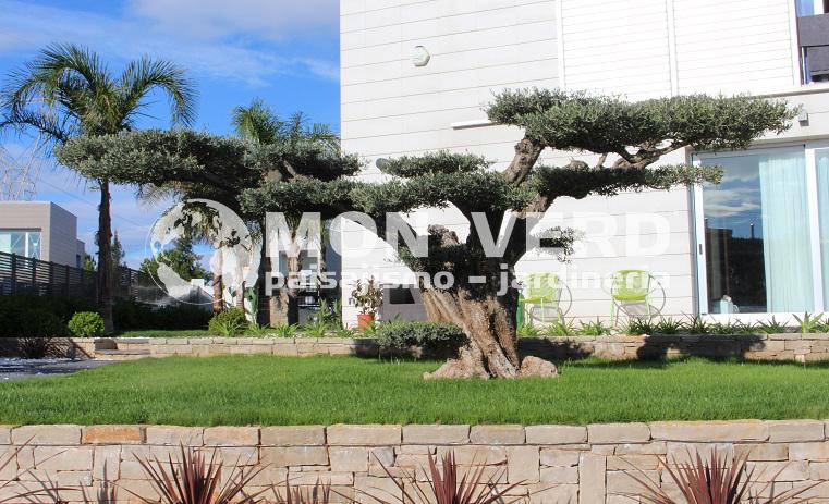 Proyecto torre en conill dise o de jardines valencia jardiner a y paisajismo - Paisajismo valencia ...