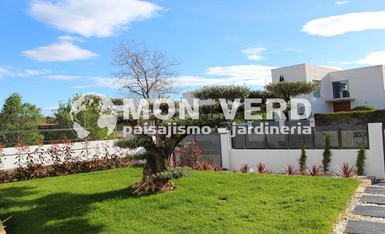 Project torre conill dise o de jardines valencia jardiner a y paisajismo - Paisajismo valencia ...